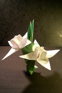 origami_edelweiss